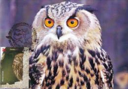 OWL, CM, MAXICARD, CARTES MAXIMUM, 2014, ROMANIA - Eulenvögel