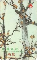 China - Famous Flower Of China Wintersweet, 24SHEB, 10.000ex, Used - China