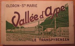 Recueil De 20 CPA Oloron-St Marie Vallée D'Aspe Le Transpyrénéen - Oloron Sainte Marie