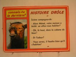 Cheval - Histoire Drole - Humour