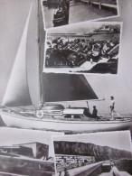 1960 CPSM Le Tréport Seine-Maritime Multi Vues Photo Véritable >  Fellous à  Saint Mandé - Le Treport