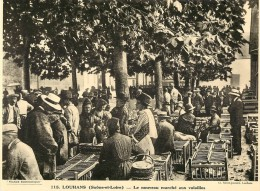 Ref 456- Photographie- Tirage Cartonné - Années 1930 - Louhans -saone Et Loire -le Nouveau Marché Aux Volailles  - - Non Classificati