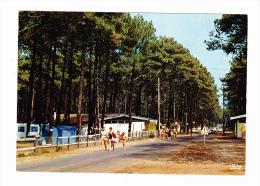 Moliets Le Camping Les Cigales L'entree - Altri Comuni