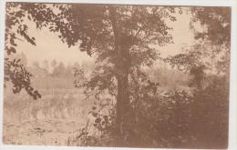 Lac D' Overmeire  - 9 - Le Rotte Put Vu De La Canardiere - Berlare