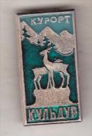 USSR Russia Old Pin Badge  - Cities - Kuldur - Cities