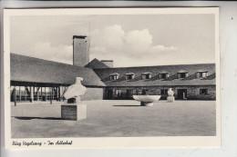 5372 GEMÜND, Burg VOGELSANG, Adlerhof - Schleiden