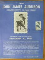 1963 USA P.O.Poster FDC Sc # 1241 John James Audubon (Birds) - First Day Covers (FDCs)