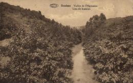 BELGIQUE - NAMUR - DOISCHE - SOULME - Vallée De L'Hermeton - Lieu Dit Insezion. - Doische