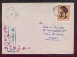 POLAND 1982 LETTER  TO KRAKOW OCENZUROWANO CENSORED GREEN CACHETS CENSOR STATION 365 - 1944-.... República