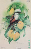 PUZZLE 4 TC Chine - ANIMAL - OISEAU Passereau Oiseaux - 4 Phonecards Bird Songbird - Vogel Telefonkarten - 3154 - Puzzles