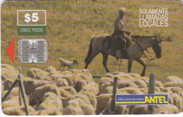 URUGUAY - Horse(21a), 11/98, Used - Uruguay