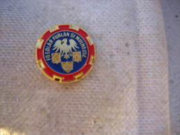 Pin's de l'Association Fogolar Furlan Di Mulhouse.