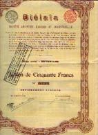 Titre : BRUXELLES « BIÉLAÏA SA Minière Et Industrielle» - Action De 50 Fr - Russie