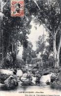INDOCHINA CAP St-JAQUES (Vietnam) - Sous Bois, Gel.1905? - Vietnam