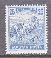 Hungary BANAT-BACSKA   10 N 24   * - Banat-Bacska