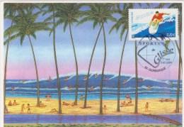 Le Surf  -Les Sports De Glisse  Oblitération 1er Jour - 2000-09