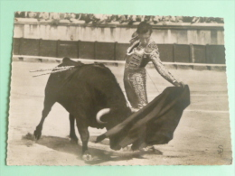 Une Jolie Passe Classique à La Muleta De Luis Miguel DOMINGUIN - Corrida