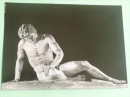 ROME - Musée CAPITOLINI - Gaulois Mourant. - Sculture