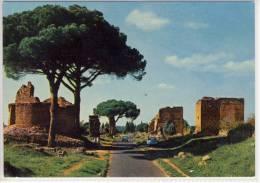 ROMA -  Via Appio Antica - Transports