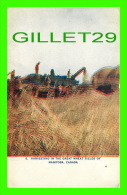 AGRICULTURE - CULTURES - HARVESTING IN THE GREAT WHEAT FIELDS OF MANITOBA - - Cultures