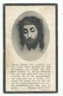 Bidprentje - Joannes Augustinus ROEFS - Beerse 1878 - Rustoord-Brasschaat 1944 - Images Religieuses