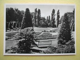 BOCHUM. La Roseraie. - Bochum