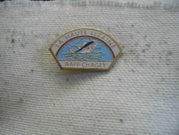 Pin�s AAPP de CHAGEY: La Haute Lizaine. Poisson, p�che