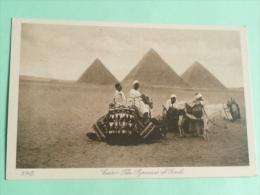 LE CAIRE - The Pyramids Of Gixeh - Le Caire