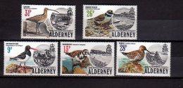 1984 Alderney - See Birds - 5 V - Paper - MI 13 To 17 - KW 28 MIE - Albatrosse & Sturmvögel