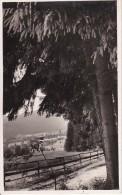 AK Seckau - Panorama - 1939 - Seltene Ansicht! (7026) - Seckau