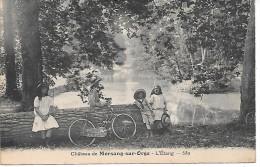 MORSANG SUR ORGE - Le Château - Morsang Sur Orge