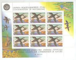 Russia 1994,Mini Sheet,Ducks,VF MNH** - 1992-.... Federation