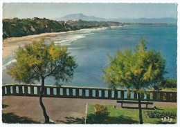 3300 - BIARRITZ (64) - La Côte Des Basques - CPSM 1964 - Scan Recto-verso - Biarritz