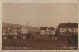Parti Ved Brumundalen St. - Norvegia