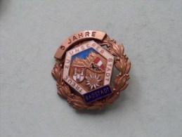 5 JAHRE RADSTADT ( Treue Zu Unserer Stadt ) / ( Suisse / Schweiz - For Grade, Please See Photo ) !! - Jetons & Médailles