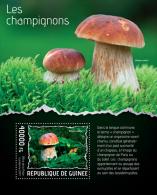gu14111b Guinea 2014 Mushrooms s/s