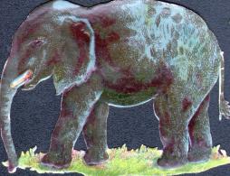 4 CHROMOS REPRESENTANT DES ELEPHANTS - FORMAT 6 X 5 Cm - Dieren