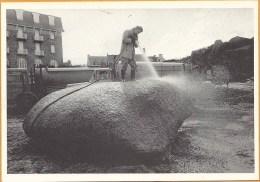 22   TANIO  MAREE  NOIRE    MARS  1980 - France