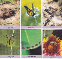 Lot De 6 Cartes Insectes - Collection Disney (winnie L'ourson) - Trading Cards
