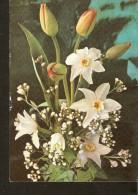 5k. Germany, Flora Flowers Bouquet Tulip Narcissus - Non Classés