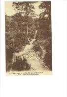 Chemin Dans La Forêt De CHEVRON à WERBOMONT - Les Hovas - Ferme Ardennaise - N°11 - Animation - Stoumont