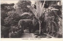 Cadenabbia - Giardino Villa Carlotta Black & White Postcard - Como