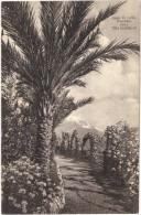 Lago Di Como - Giardino Della Villa Serbelloni Black & White Postcard - Como