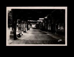 09 - MIREPOIX - Arcades - Mirepoix
