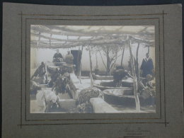 Ref2963 AX109 Une Photo Originale - Atelier Teinturerie Teinturiers Tissus Artisanat Afrique Du Nord - Aristote Zermas - Professions