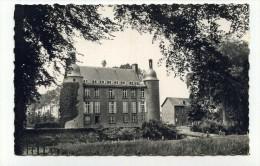 CP , 61 , FLERS , Le Château - Flers
