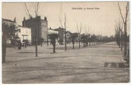 31 - TOULOUSE - La Grande Allée (des Palmiers) - Edition Querrois Mayerhofer Et Cie - Toulouse