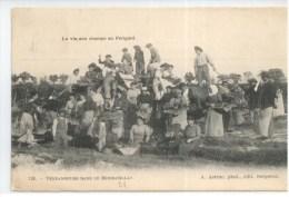 24 - La Vie Qux Champs En Périgord - Vendangeurs Dans Le Monbazillac - France
