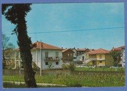DIVIGNANO (Novara) - F/G Colore  (10909) - Otras Ciudades