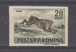 1956, GIBIERS,  YV No 1488  Et MI No 1614  Lievre / Lepus Europaeus - Gebraucht
